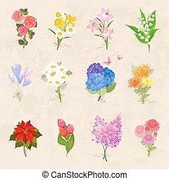 beau, romantique, collection, bouquets, gracieux, fleurs