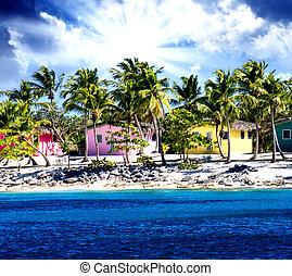 beau, rose, antilles, maisons, brillant, île, jaune, santo domingo, plage, rouges