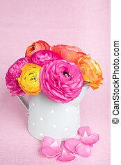 beau, rose, came, coloré, arrosage, ranunculus, fond, fleurs