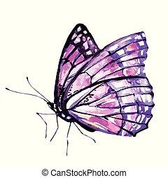 beau, rose, fond blanc, papillon