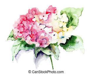 beau, rose, hortensia, fleurs