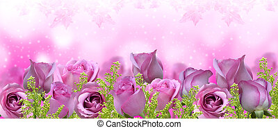 beau, roses, background-banner