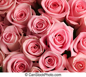 beau, roses, fond