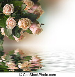 beau, roses