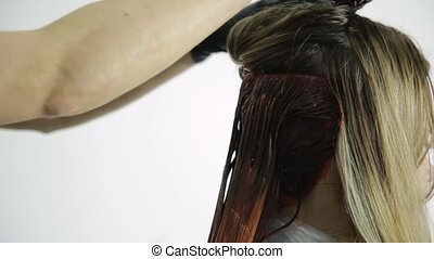 beau, salon, coloration, pêche, beauté, couleur, cheveux, femme