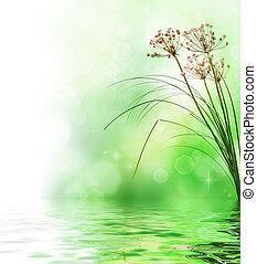 beau, scène, nature