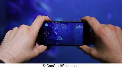 beau, smartphone, fish, dos, aquarium, vidéo, pousses, homme