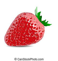 beau, strawberries., vecteur, illustration, de, a, réaliste