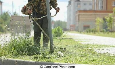 beau, tondeuse, faire, conception, mows, herbe, homme