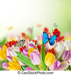 beau, tulipes, papillons, bouquet
