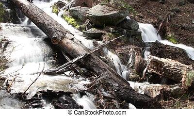 beau, usa, parc national, chute eau, sequoia, californie
