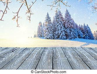 beau, vieux, neigeux, bois, panorama, vide, planches, paysage