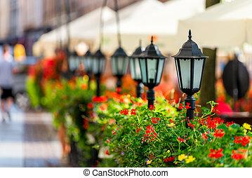 beau, ville, entouré, lampes rue, fleurs, rang