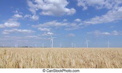 beau, zone, panorama, générateurs, paysage, vent, steppe
