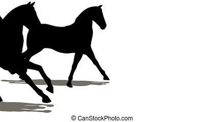 beaucoup, chevaux, silhouette