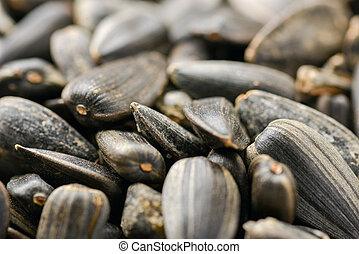 beaucoup, de, tournesols, graines, placé, sur, a, blanc,...