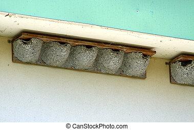 nid frelons surplomb toit sous coup grand nid toit images rechercher photographies. Black Bedroom Furniture Sets. Home Design Ideas