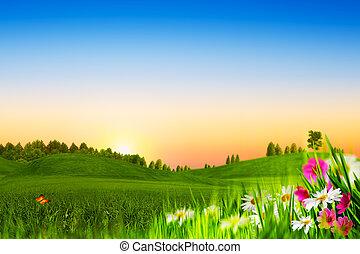 beauté, evening., naturel, paysage abstrait