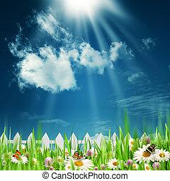 beauté naturelle, résumé, arrière-plans, agriculture, fleurs