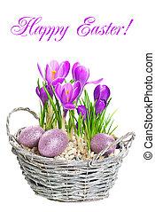 beautifil, 春天, 蛋, 番紅花, 裝飾, 花, 復活節