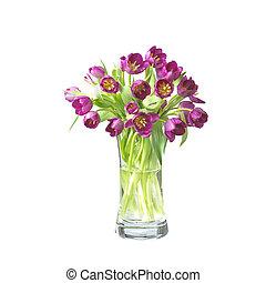 beautifil, 鬱金香, 花, 在, a, 花瓶, 被隔离, 在懷特上, 由于, 裁減路線