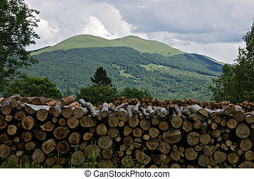 Beautifool green mountains in polish of Bieszczady
