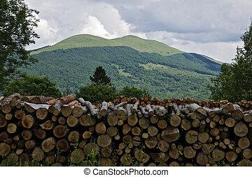 beautifool, montañas verdes, en, polaco, de, bieszczady