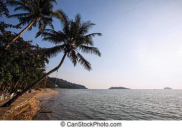 Beautiful a beach in tropics.