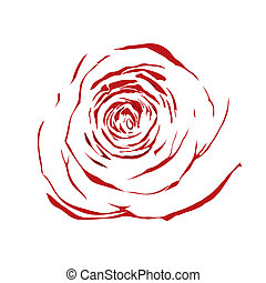 beautiful abstract sketch red rose isolated on white background.