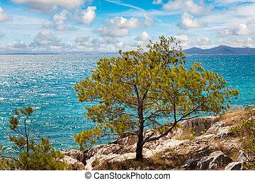 Beautiful Adriatic coast