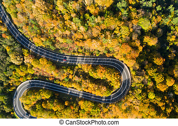 Beautiful aerial landscape of mountain forest road. Aerial view of curvy road in beautiful autumn forest