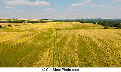 Beautiful aerial view of German countryside and meadows