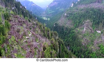 aerial view of mountains valley
