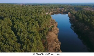 Beautiful aerial view of sring forest and river. Eye bird view on summer nature, green pine forest and meandering river