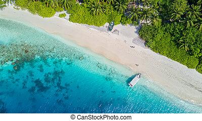 Beautiful aerial view of tropical beach