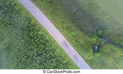 vehicles drive along asphalt road with steep green roadsides...