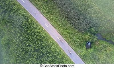 vehicles drive along asphalt road with steep green roadsides...