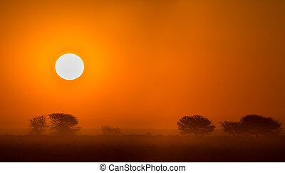 Beautiful african sunset