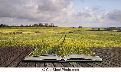 Beautiful agricultural English countryside landscape during early Spring concept coming out of pages in open book