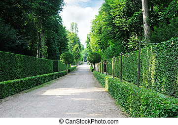 Beautiful alley in the park