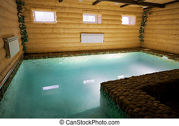 pool in a wooden sauna