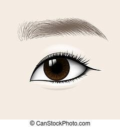 Beautiful Asian Woman Eye and Brow. Vector illustration.