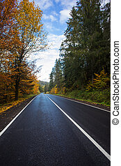 Beautiful asphalt road with yellow leaves on the trees