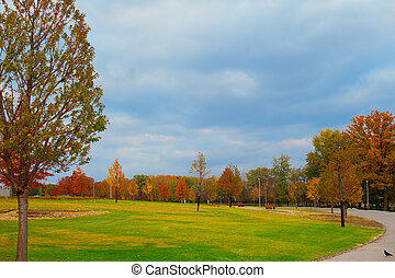 Beautiful autumn alley in the park with colorful trees