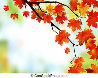 Beautiful Autumn Background.