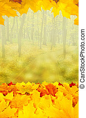 Beautiful autumn background with maple leaves