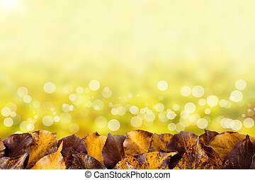 Beautiful autumn background with hawthorn leaves