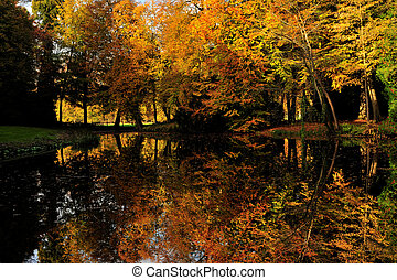 Beautiful autumn colors in the Netherlands