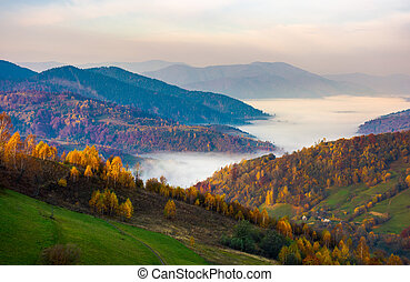 beautiful autumn dawn in mountainous rural area