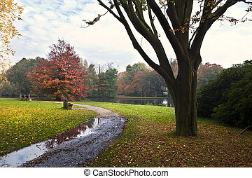 beautiful autumn day in park